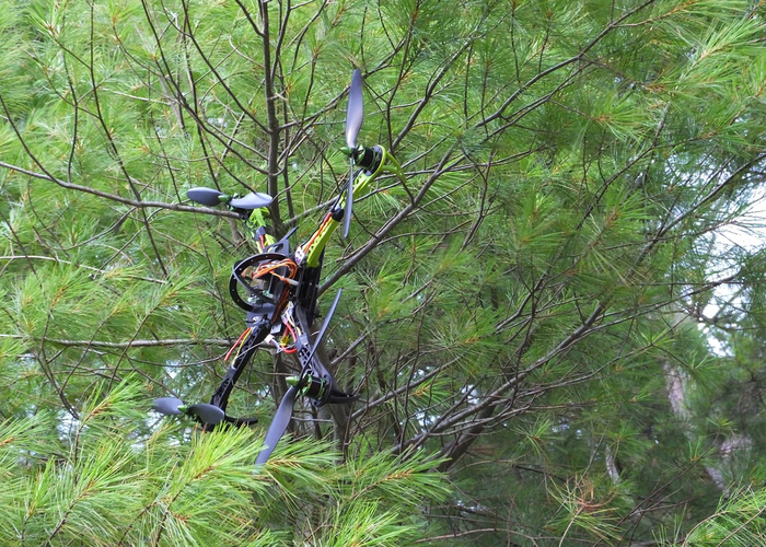 drone stuck in tree